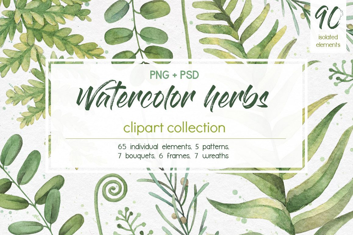 Watercolor herbs. Clipart collection example image 1