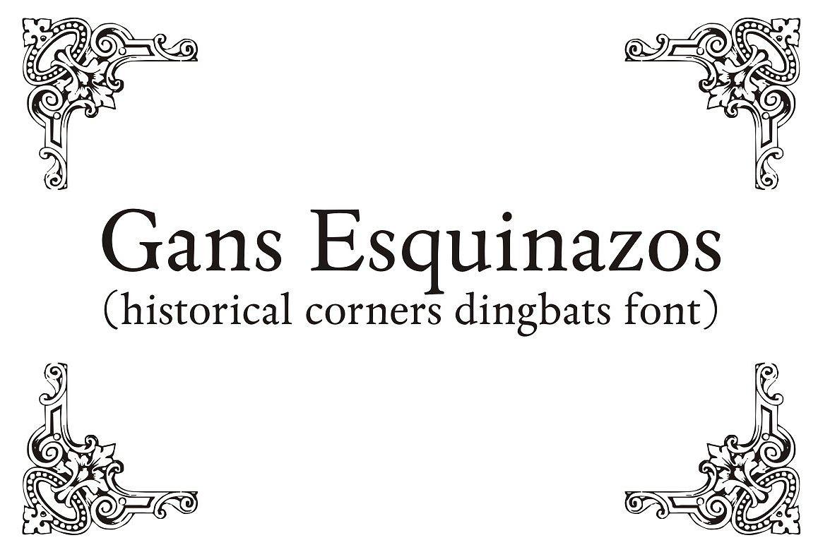 Gans Esquinazos example image 1