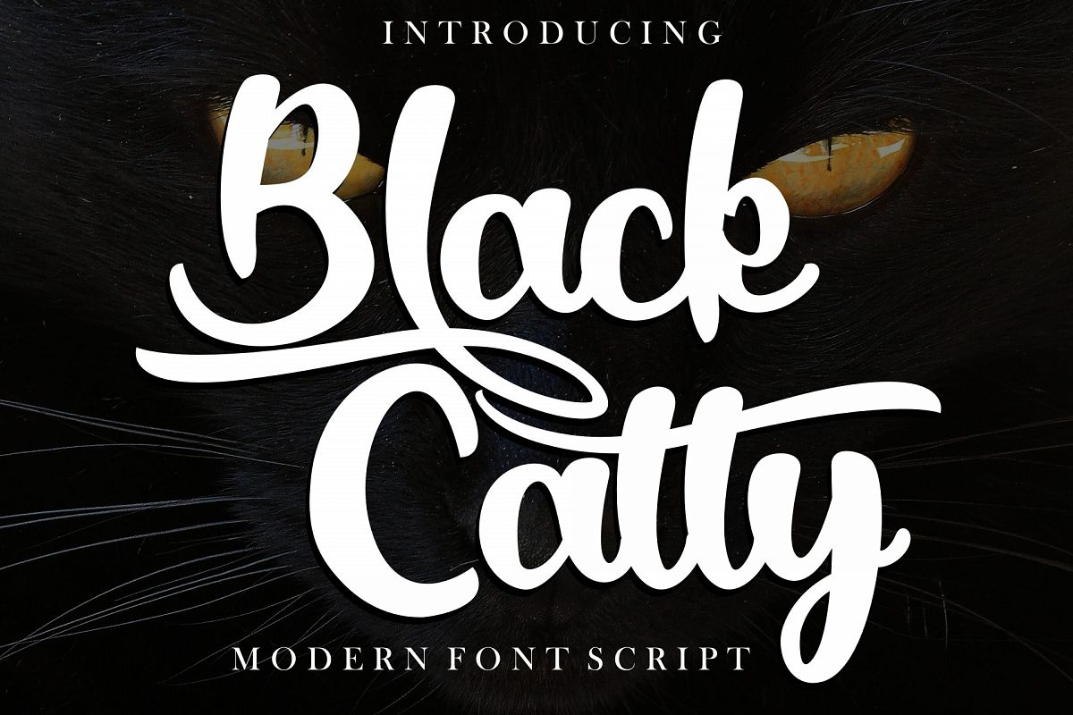 Black Catty script example image 1