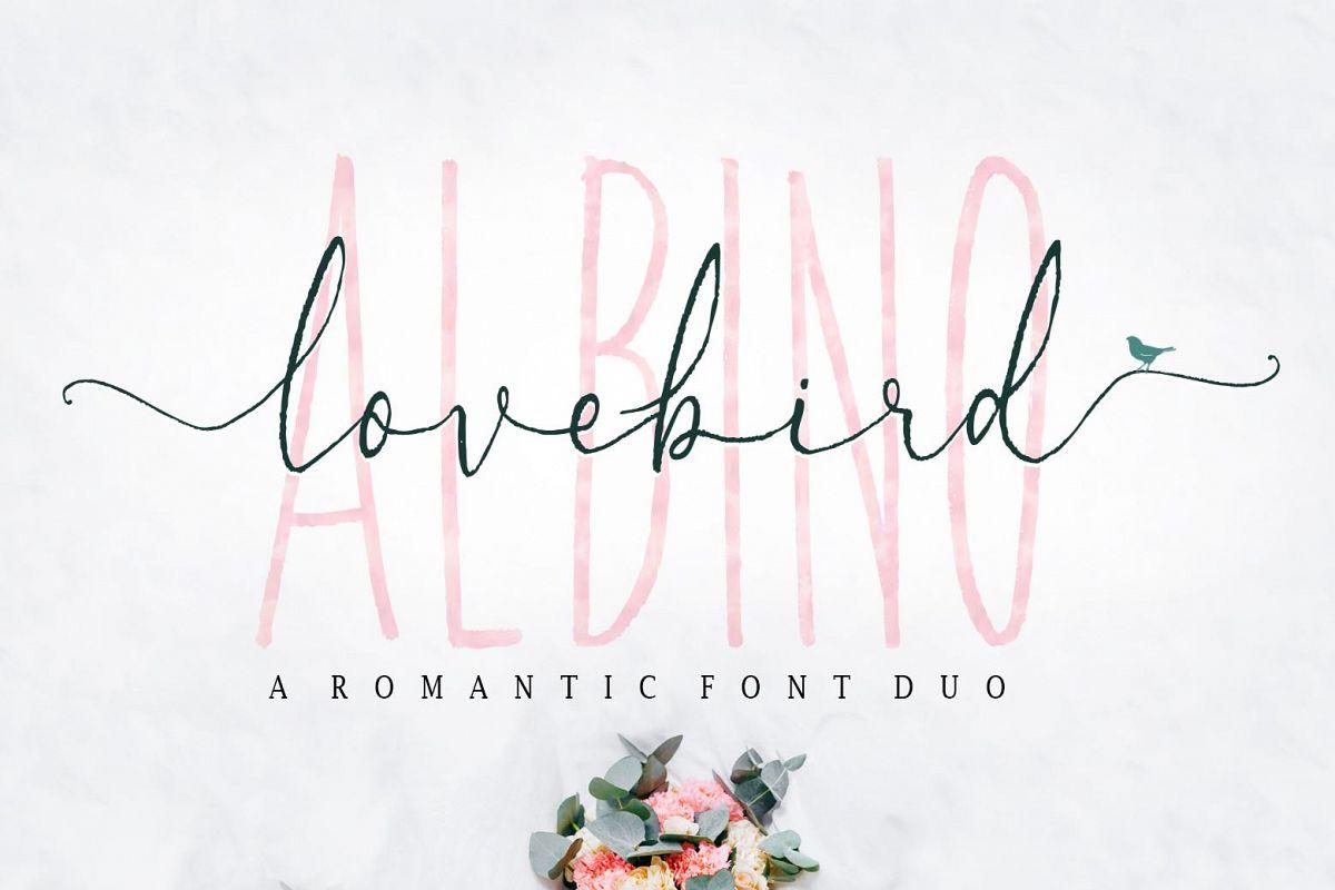 Albino Lovebird - Font Duo example image 1