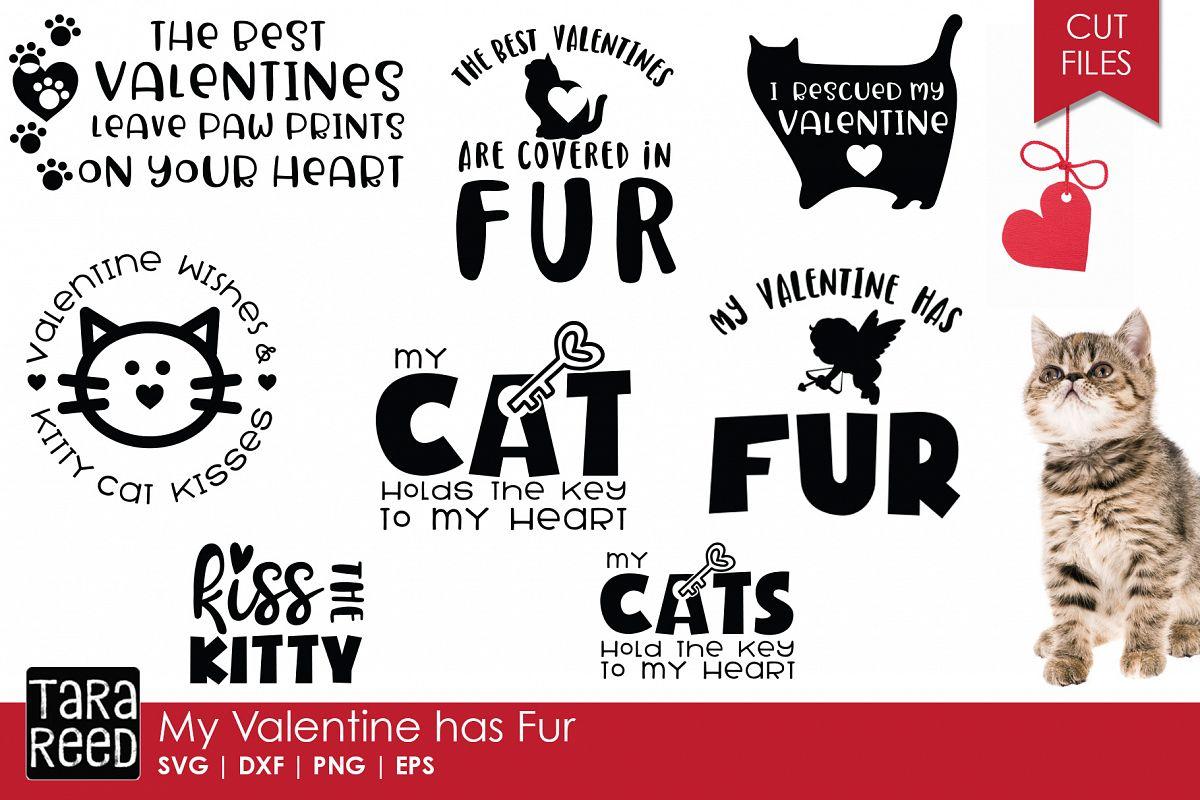 My Valentine has Fur - Valentine's Day SVG Files example image 1
