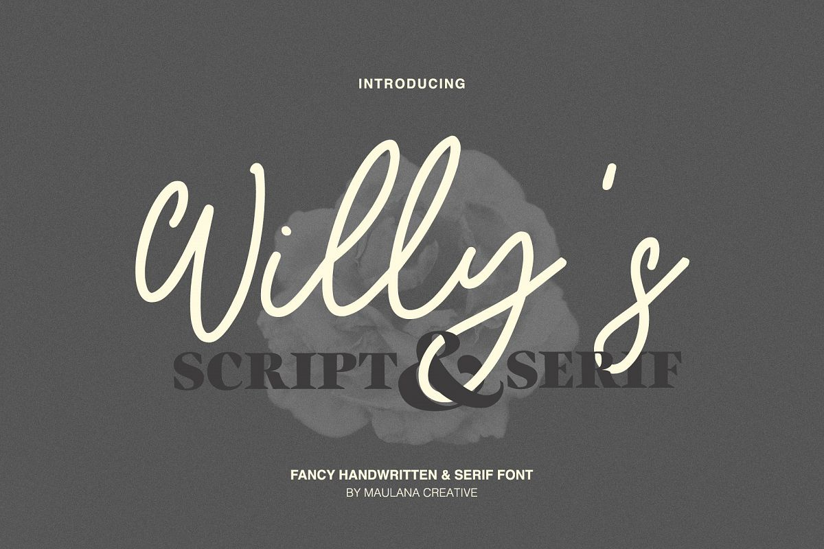 Willys Script Serif Font example image 1