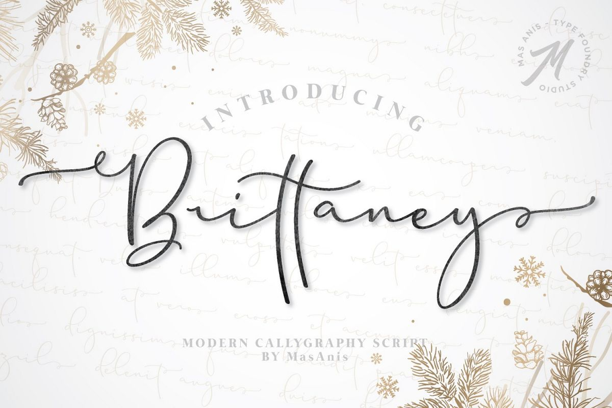 Brittaney - Modern Calligraphy Font example image 1