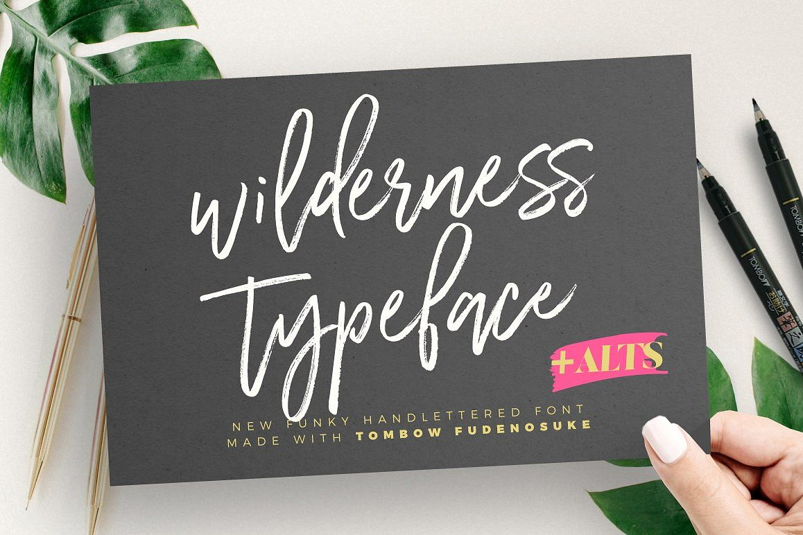 Wilderness Typeface example image 1