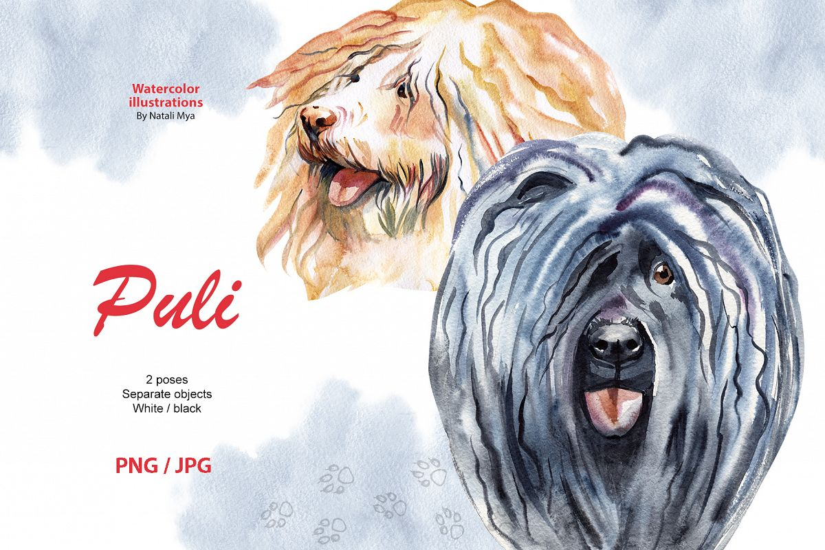 Watercolor dog - Puli example image 1