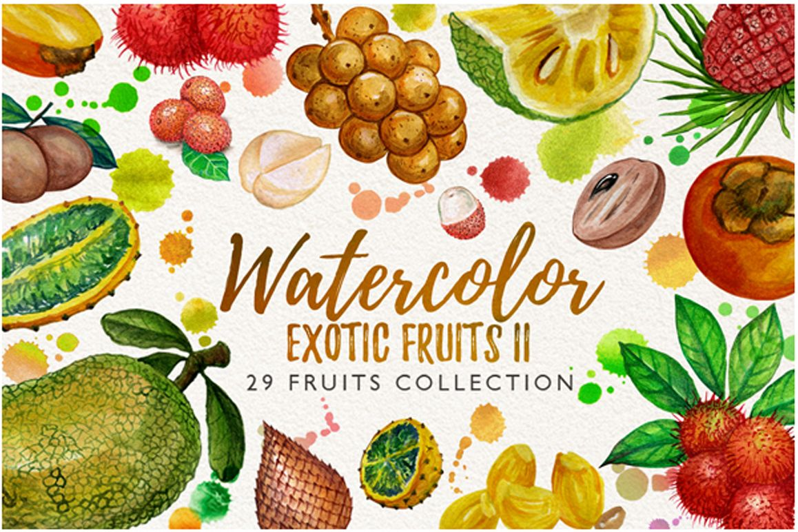 watercolor fruit vol.7 example image 1