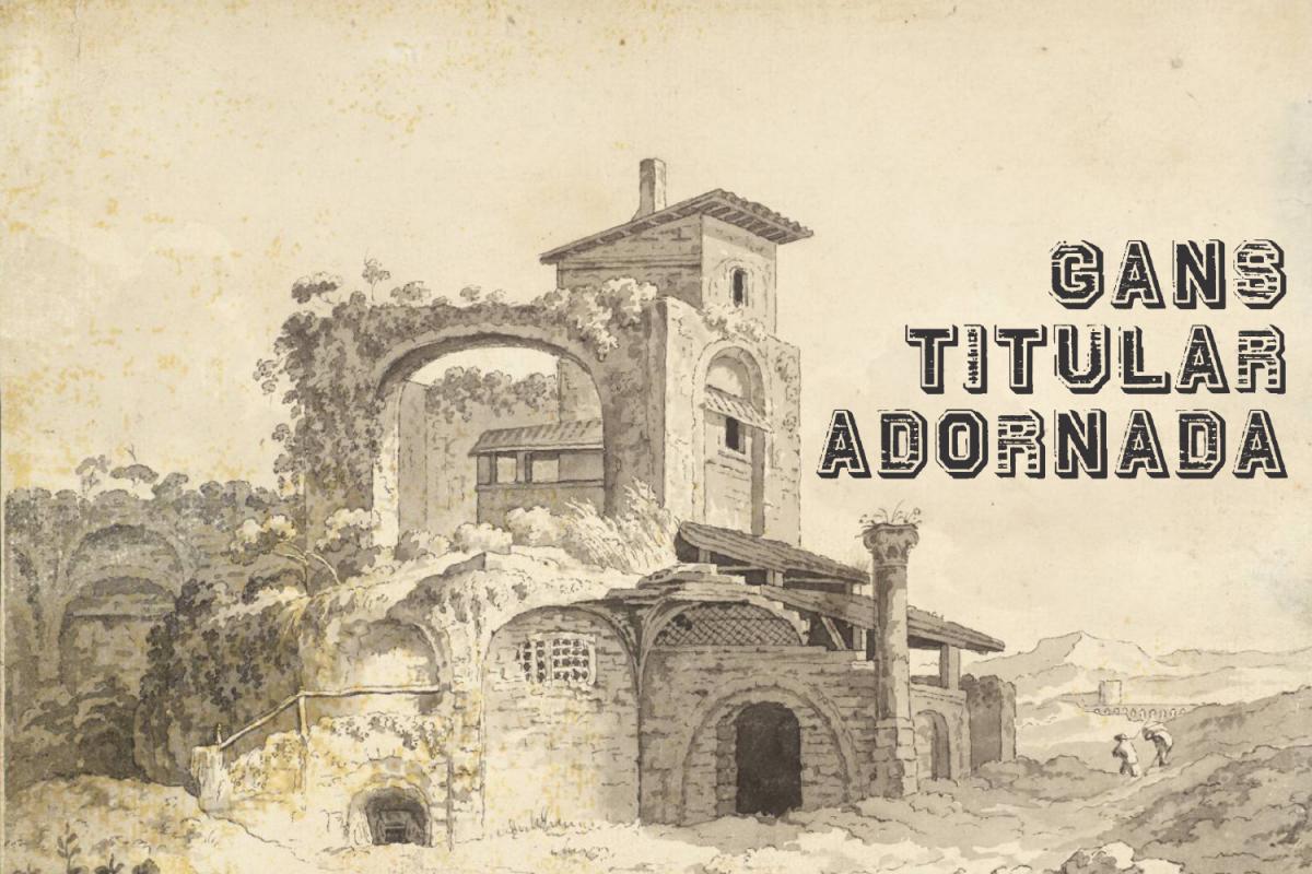 Gans Titular Adornada  example image 1