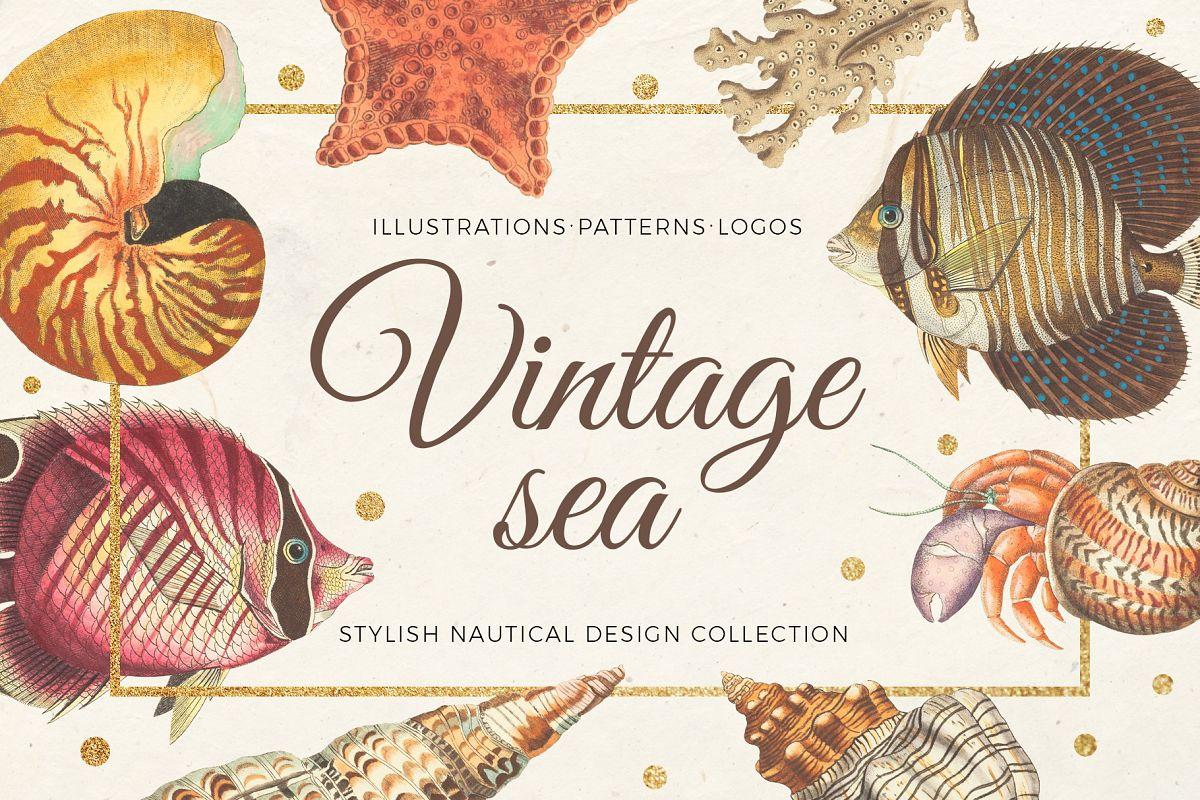 Vintage sea - nautical design set example image 1