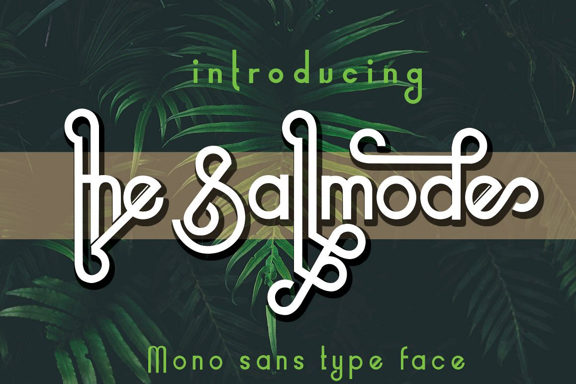 the Sallmode example image 1