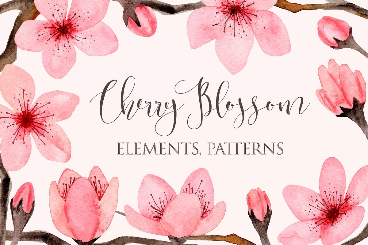 Watercolor Cherry Blossom. Patterns example image 1