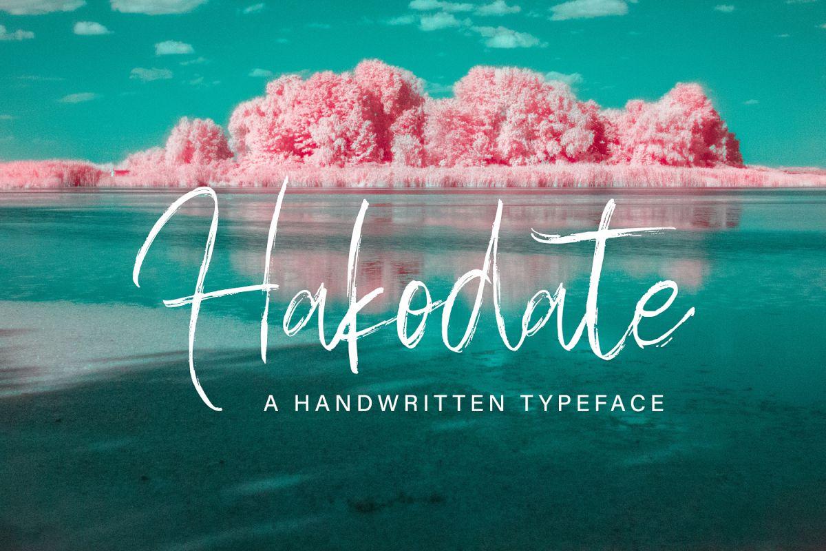 Hakodate - Handbrush Typeface example image 1