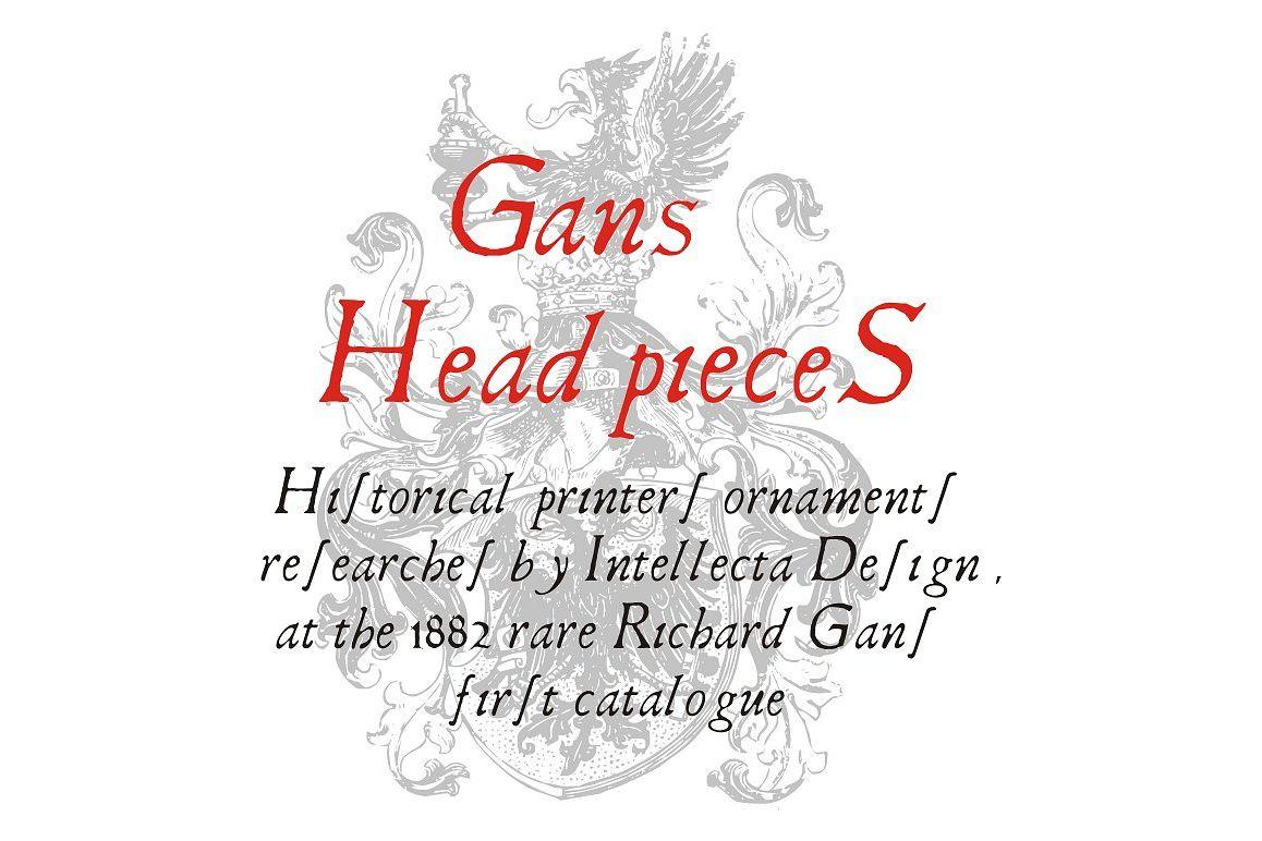 Gans Headpieces example image 1
