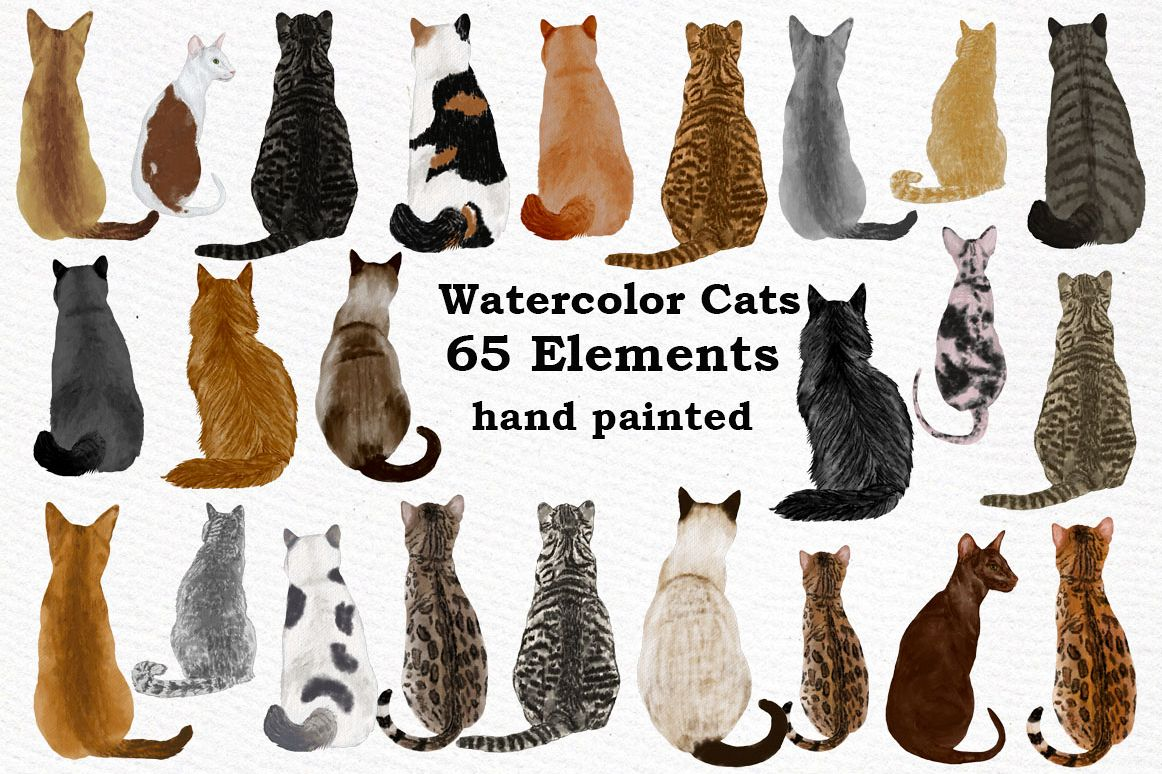 Cat Clipart, WATERCOLOR CATS, Cat breeds,Pet clipart, kitten example image 1