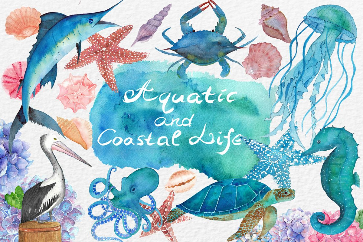 Watercolor Aquatic and Coastal Set example image 1
