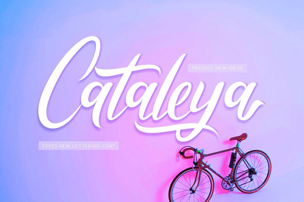 Cataleya example image 1
