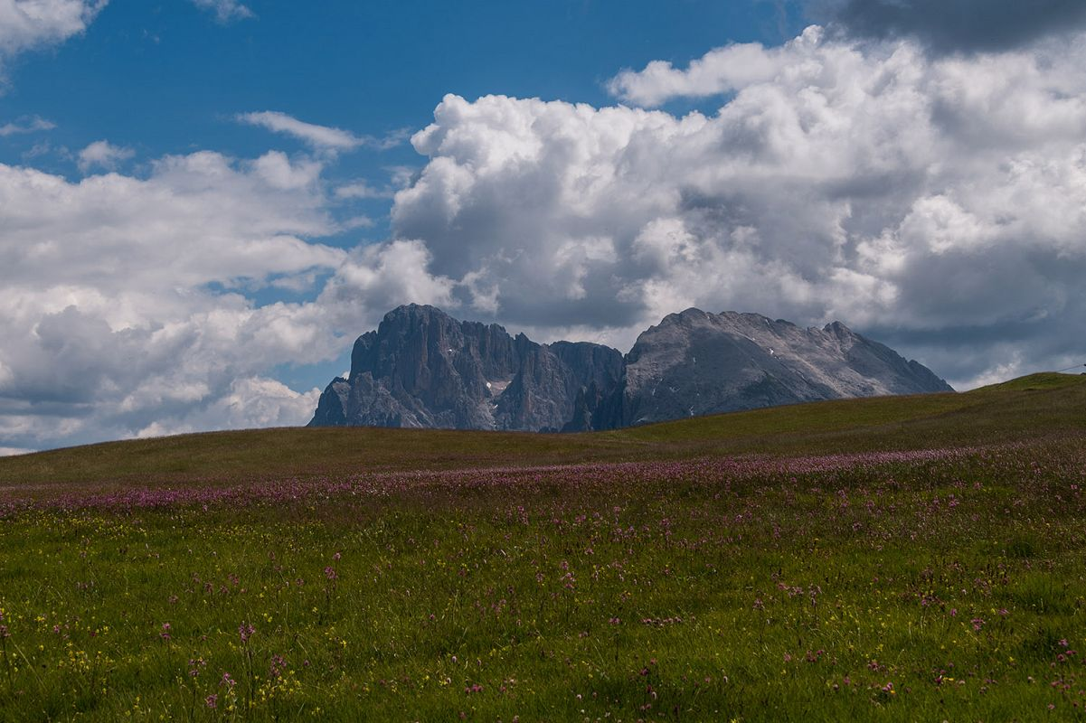 Seiser Alm on a beautiful day example image 1