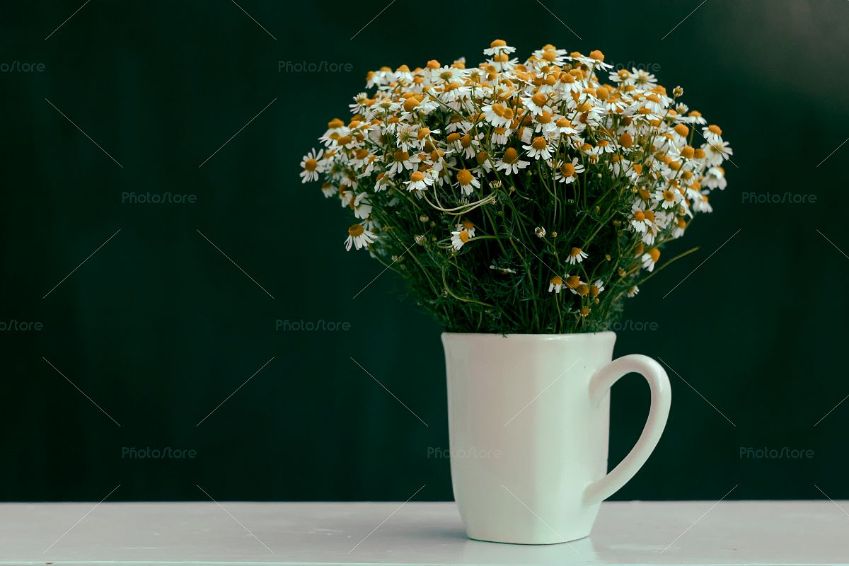 Bouquet of chamomiles in a cup example image 1