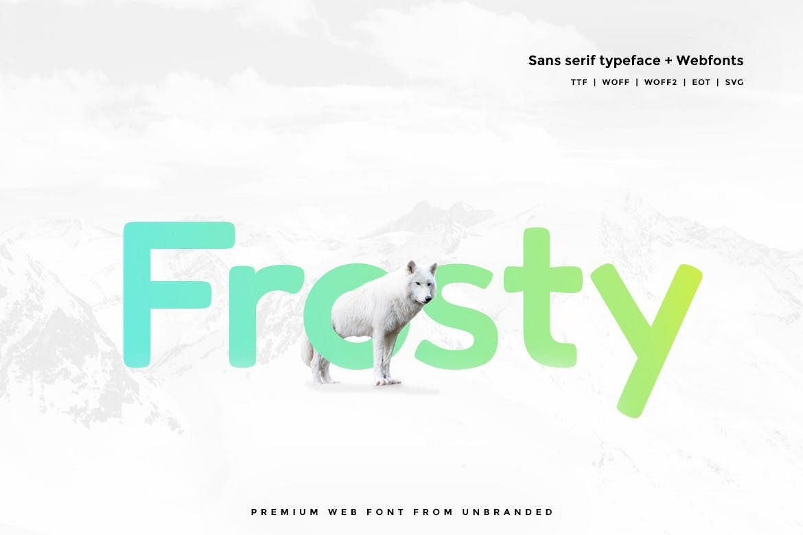 Frosty - Modern Typeface with WebFonts example image 1