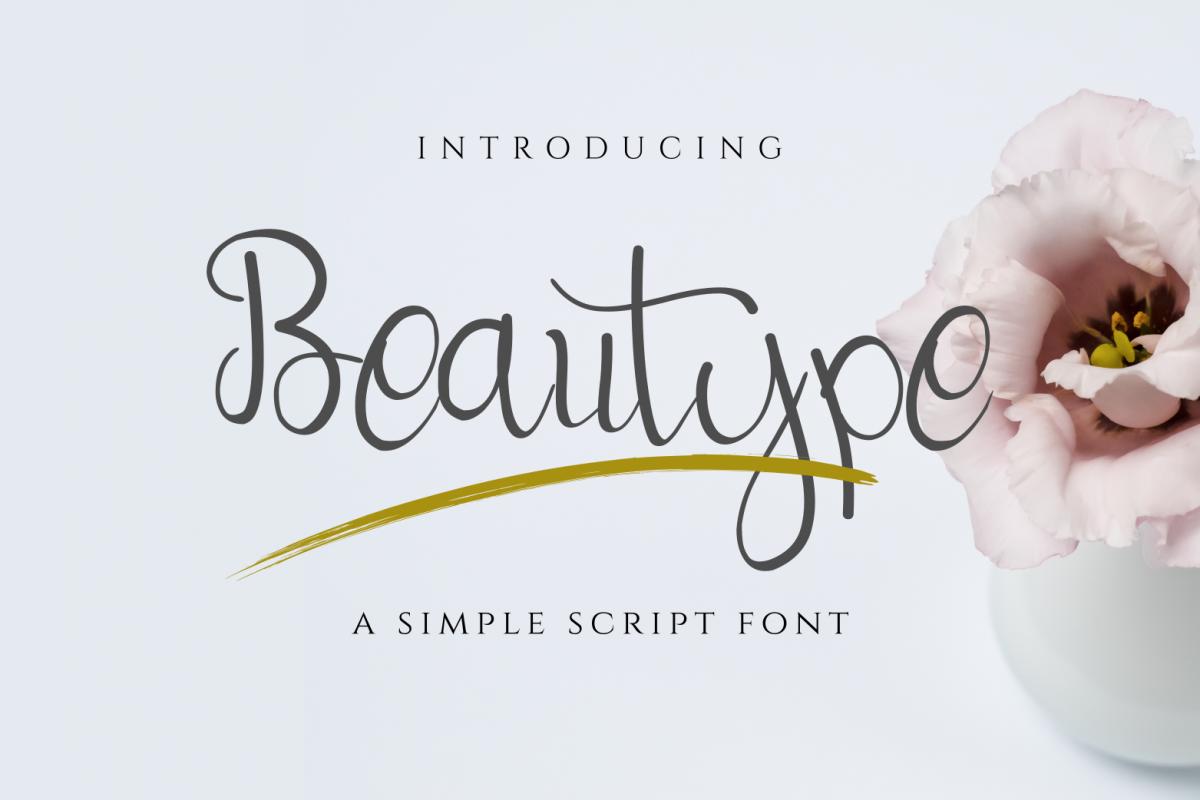 Beautype - Simple Script Font example image 1