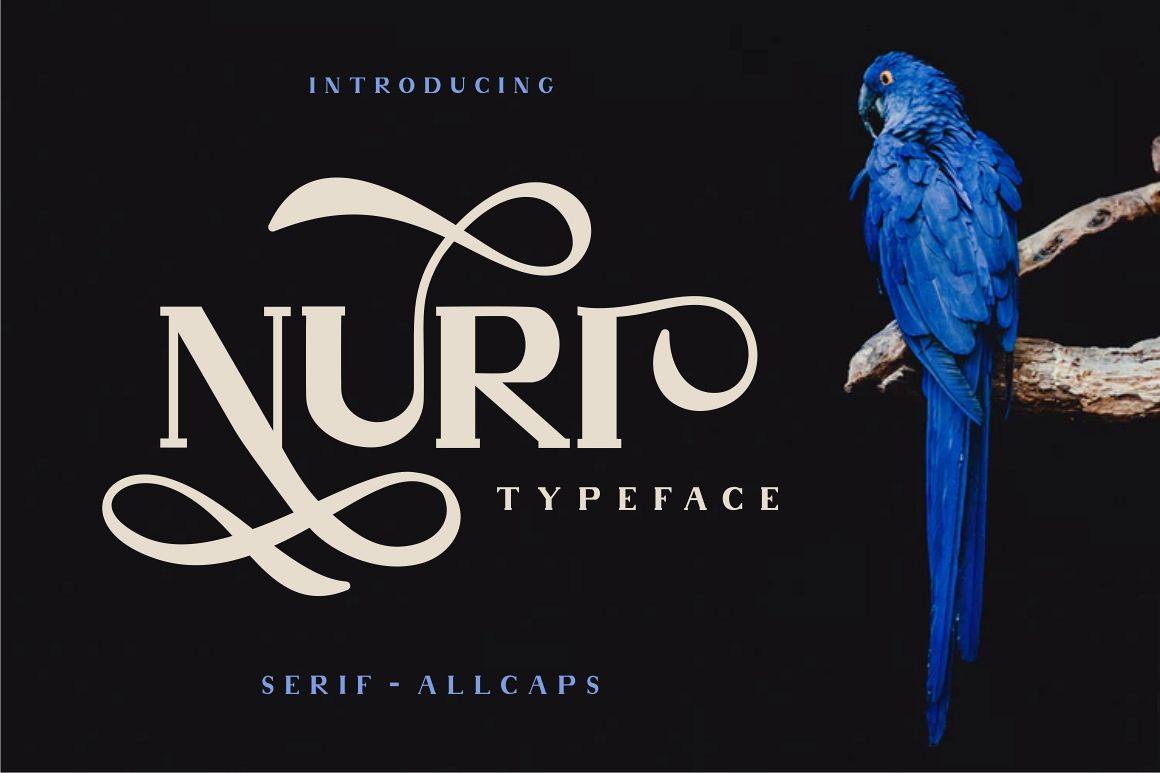 Nuri Typeface example image 1