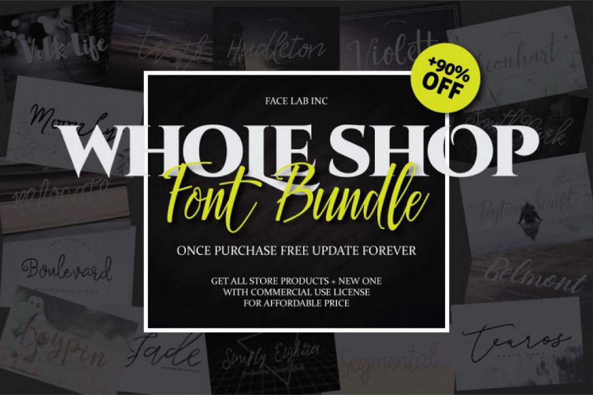 17 IN 1 FONT BUNDLE example image 1
