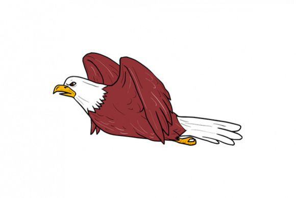 Bald Eagle Flying Cartoon example image 1