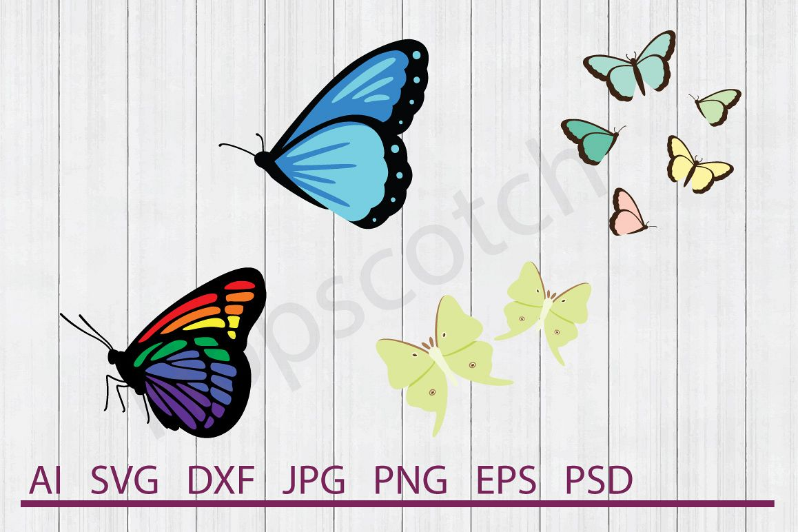 Butterfly Dxf