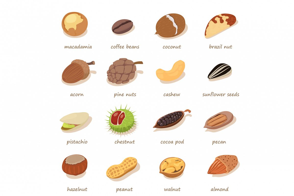 Nuts and seeds icons set, isometric style example image 1