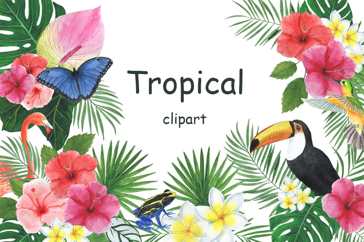 Watercolor tropical clipart example image 1