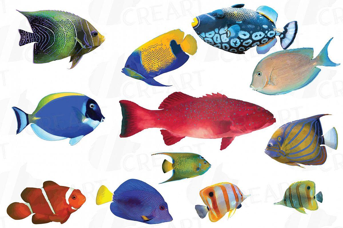 Watecolor Tropical Fish Clip Art 12 Vectors Example Image 1