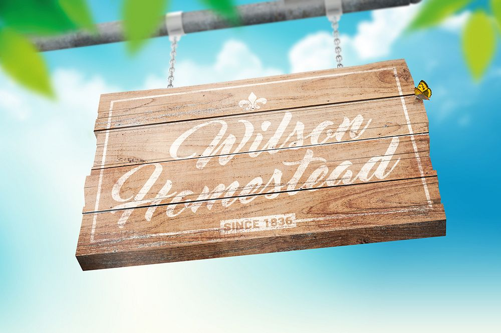 Hanging Wooden Sign Mockup example image 1