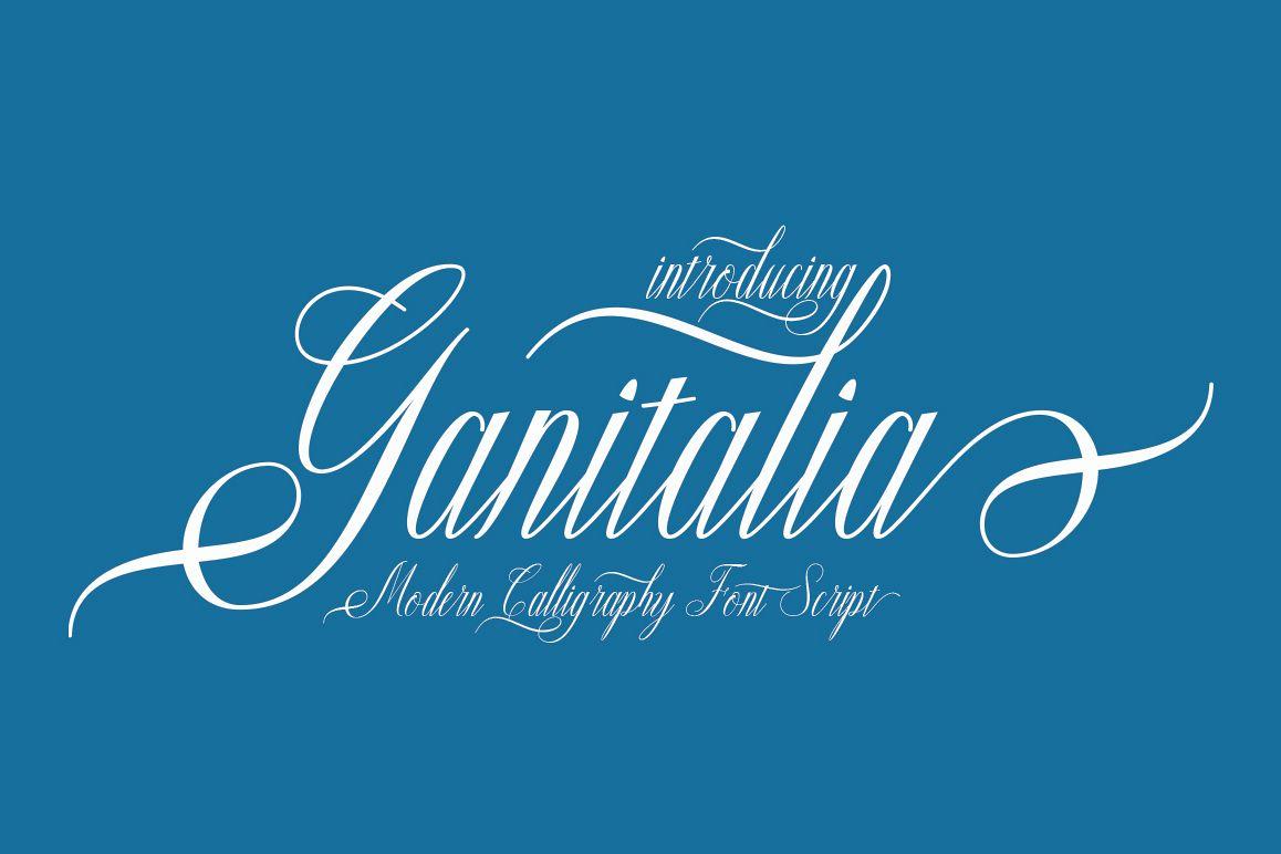 Ganitalia example image 1