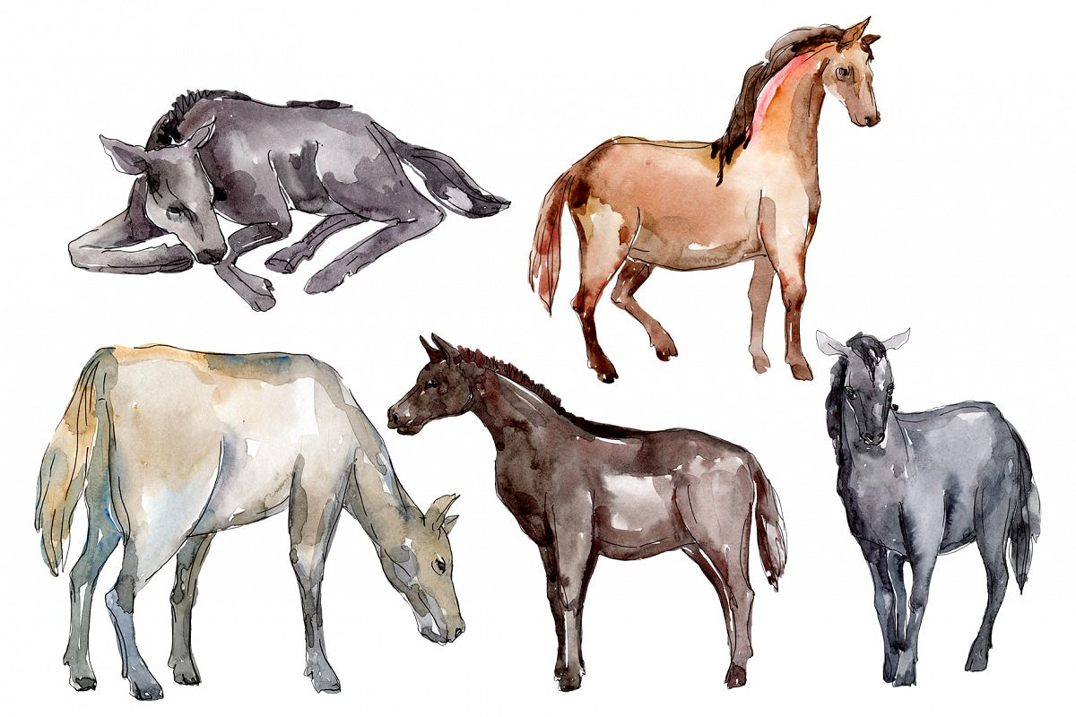 Farm animals Horse, foal Watercolor png example image 1
