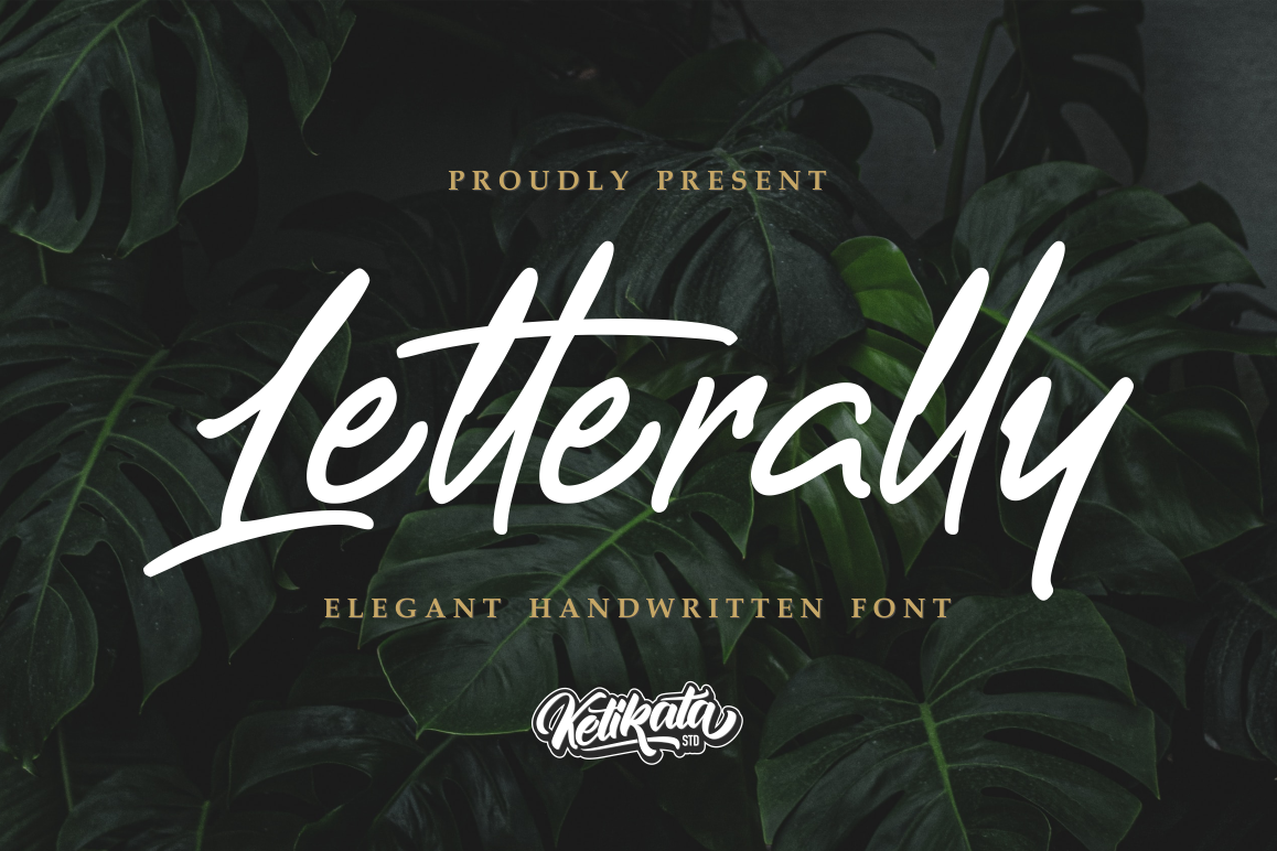 Letterally Handwritten Elegant Font example image 1
