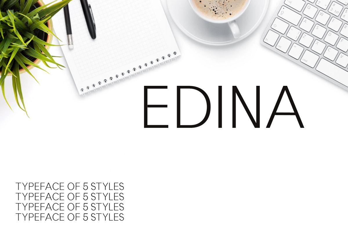 Edina Sans Serif Minimal Typeface example image 1