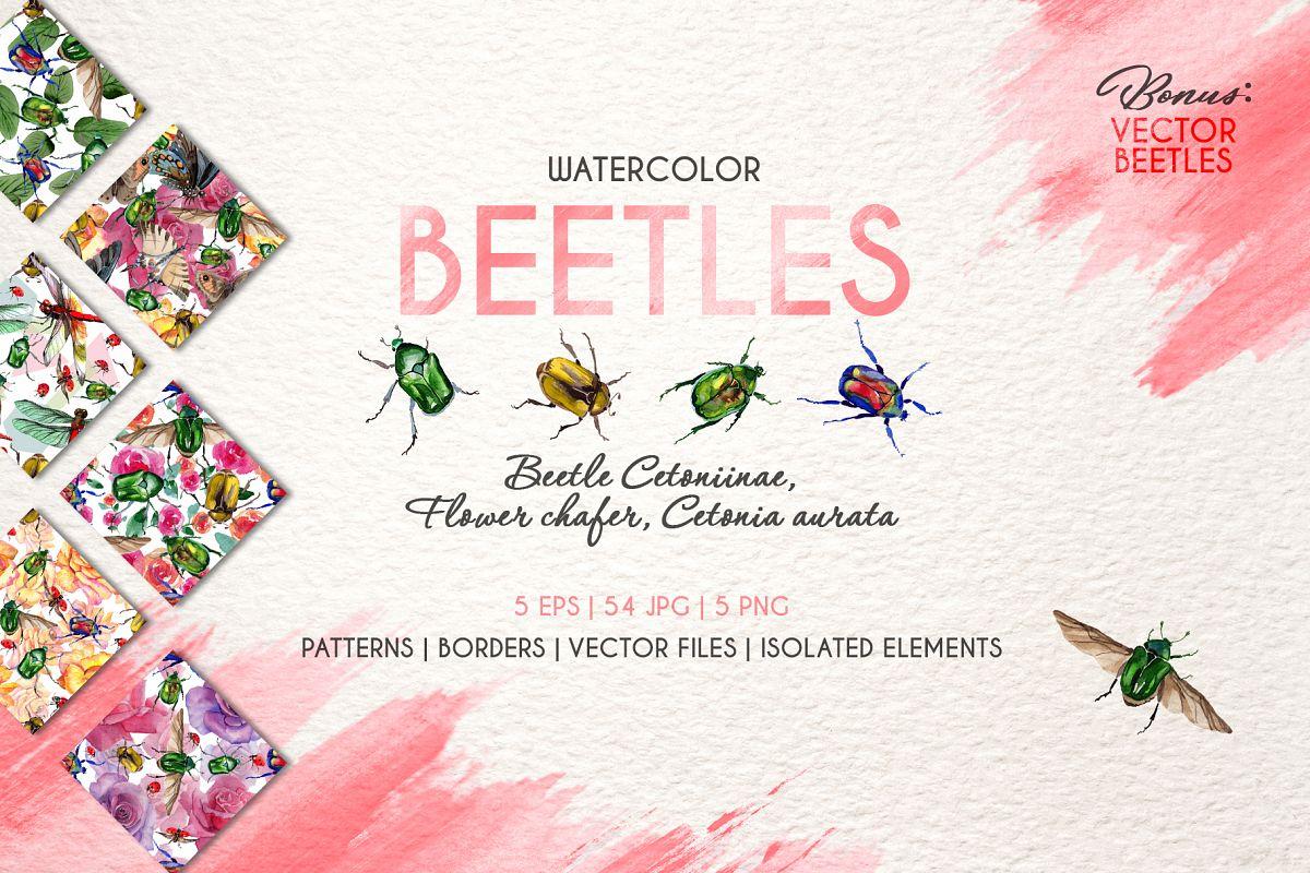 Beetle Cetoniinae,Flower Watercolor png example image 1