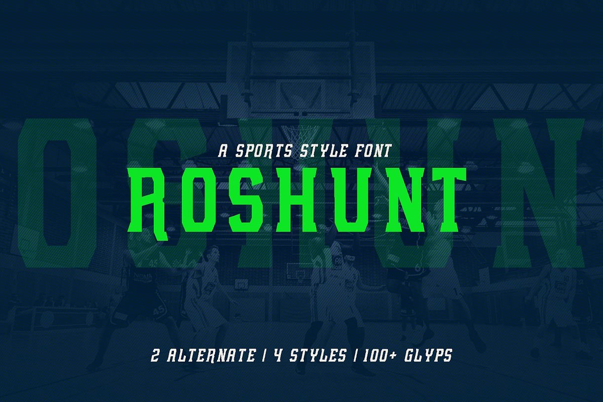 Roshunt - NFC Font Family example image 1