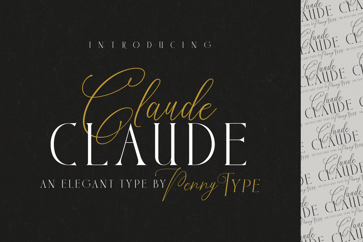 Claude Font Duo example image 1