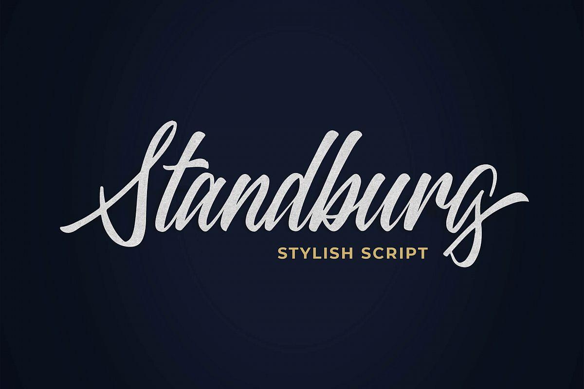 Standberg Script Font example image 1