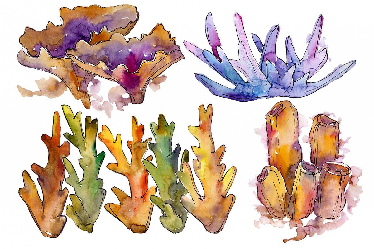 Corals joy of nature watercolor png example image 1