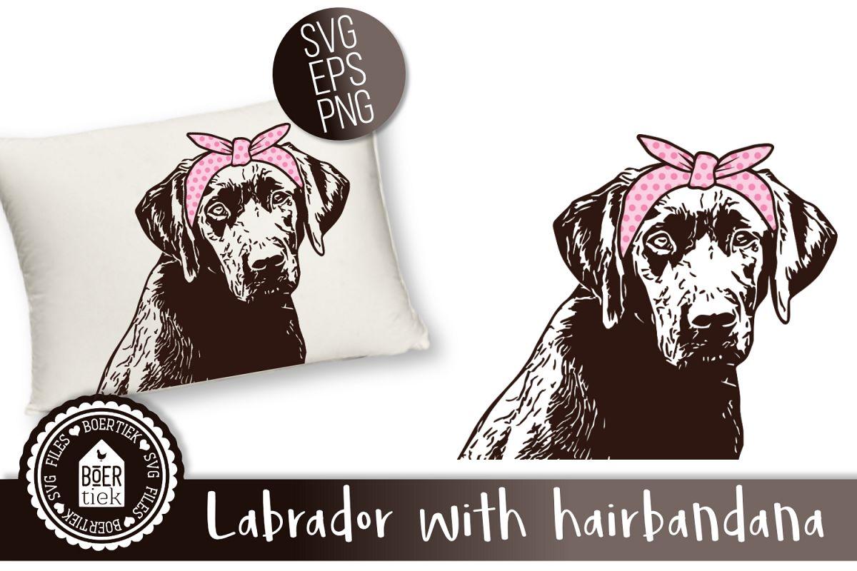 Labrador retriever with hairbandana example image 1