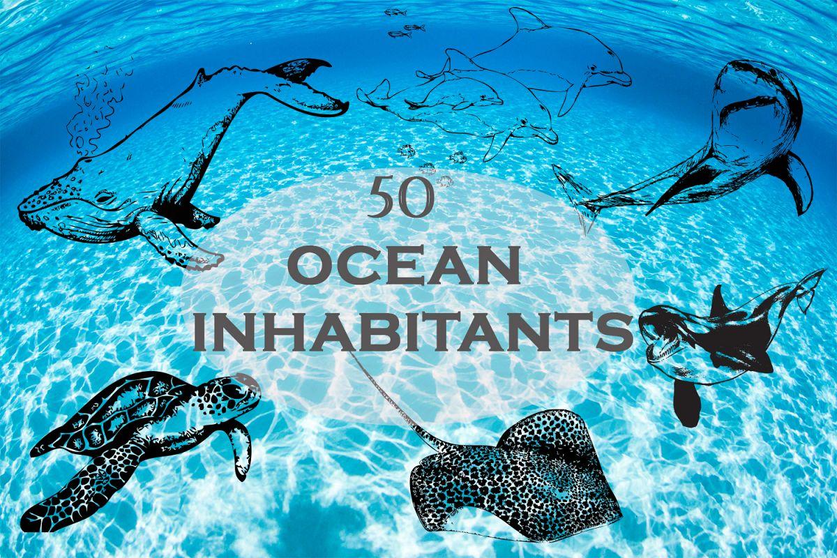 Ocean inhabitants set. Hand drawn illustration collection. example image 1