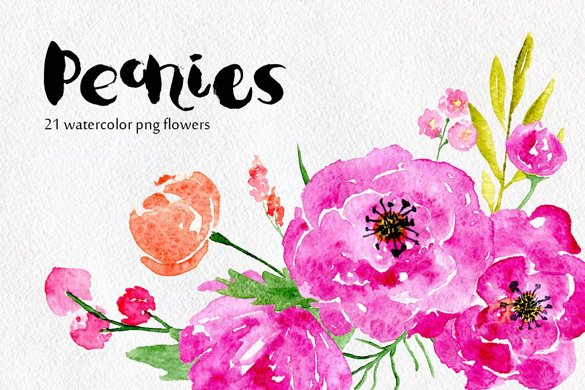 Watercolor flowers peony, floral set example image 1