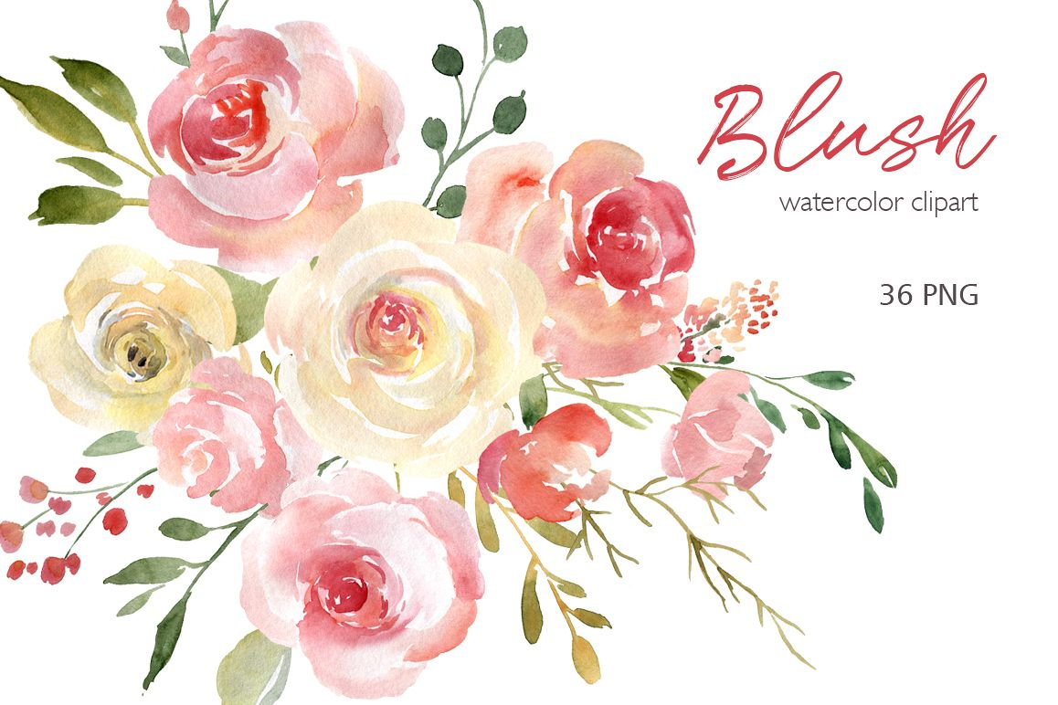 Blush Watercolor Flowers Roses Peony Png Collection