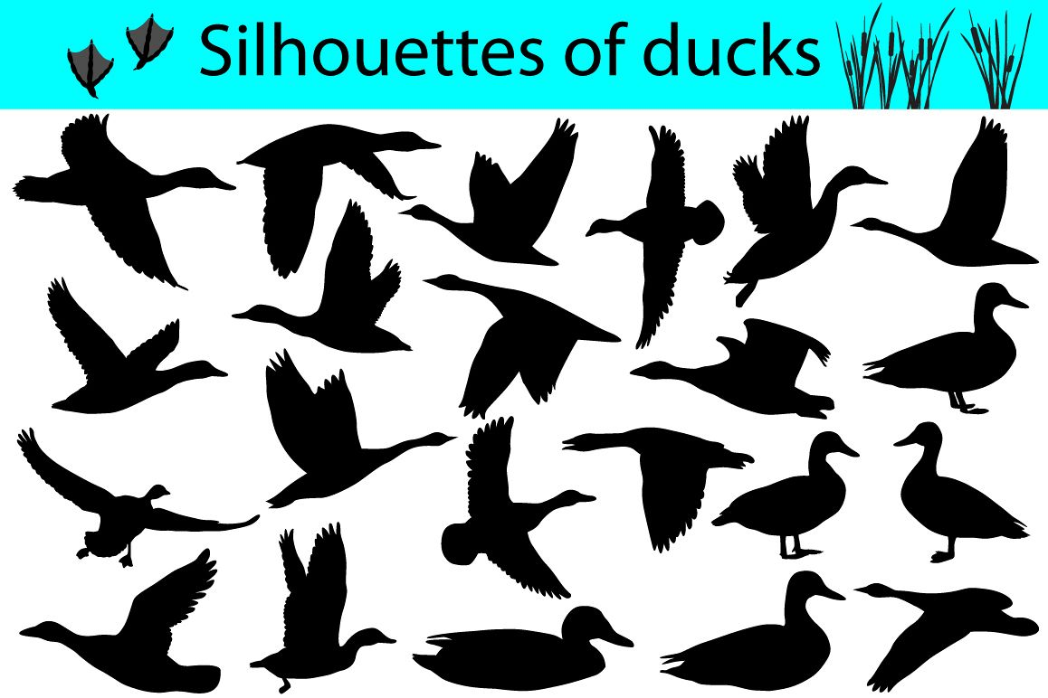 Silhouettes of ducks example image 1