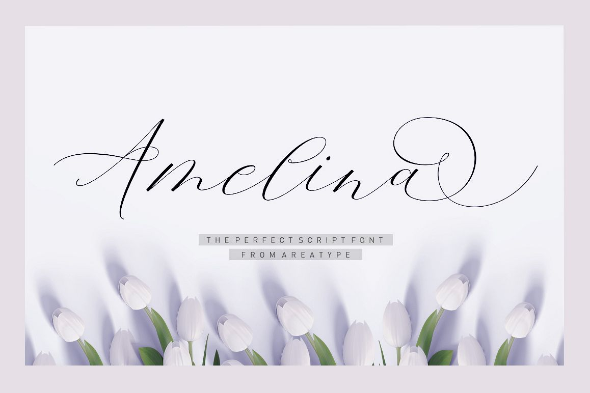 Amelina Script example image 1
