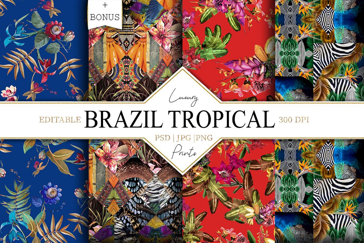 Brazil Tropical example image 1