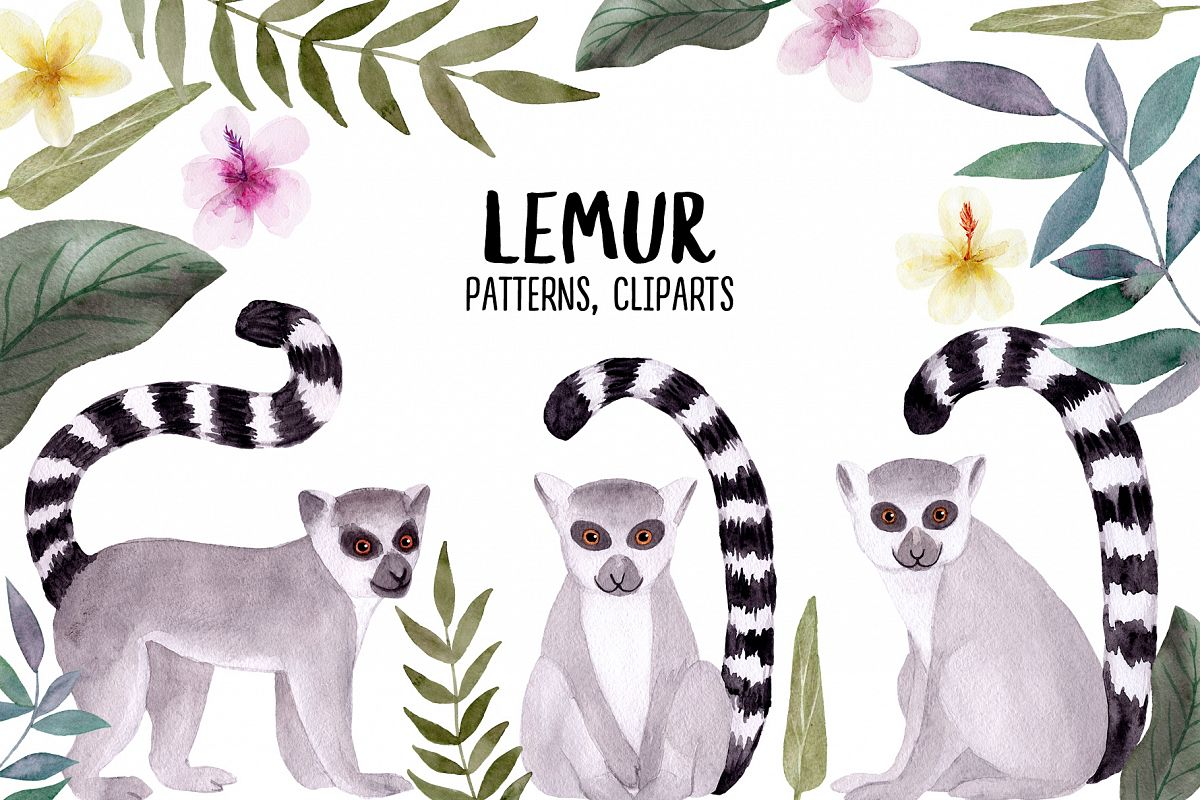 Watercolor Lemur. Patterns, Cliparts example image 1