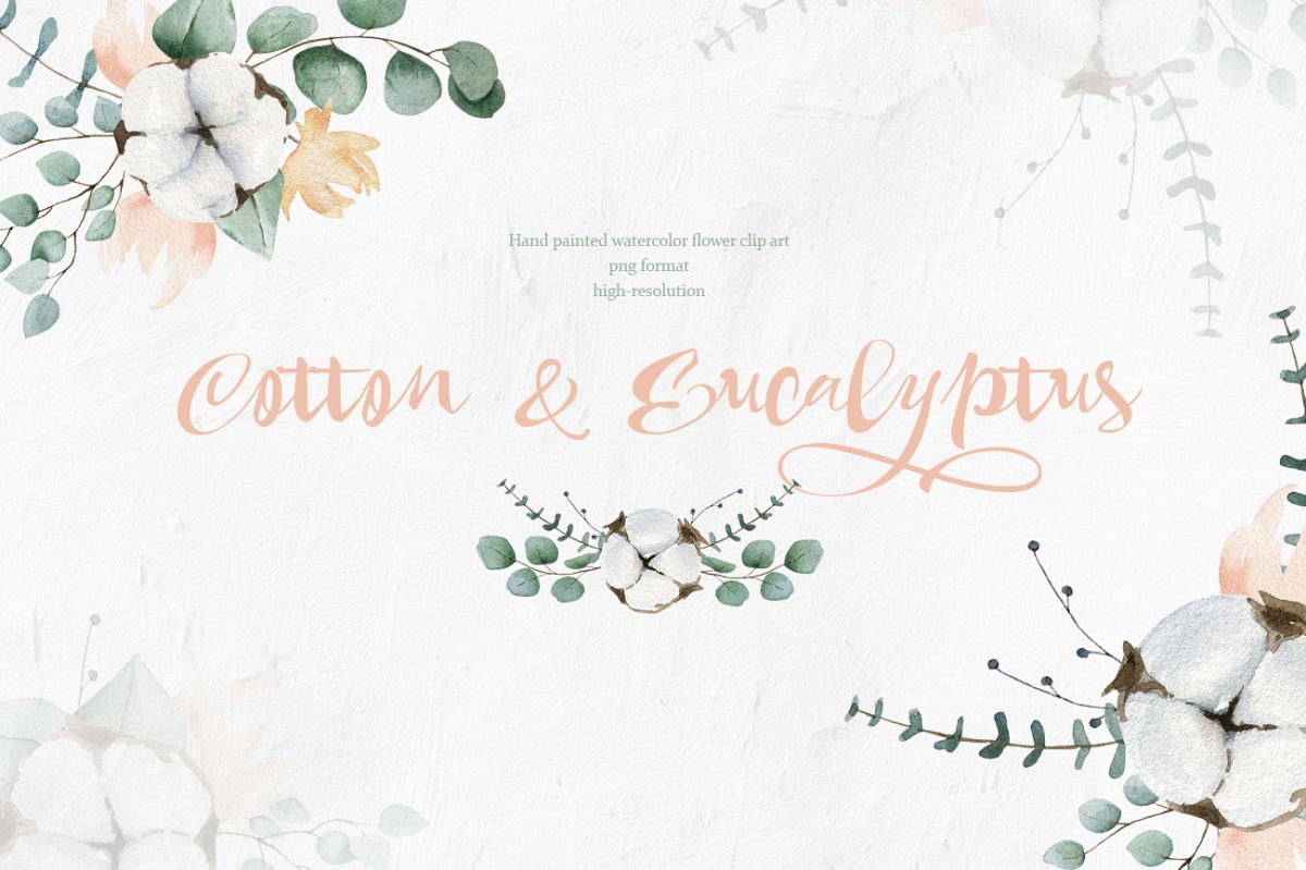 Cotton and Eucalyptus watercolor spring clipart example image 1