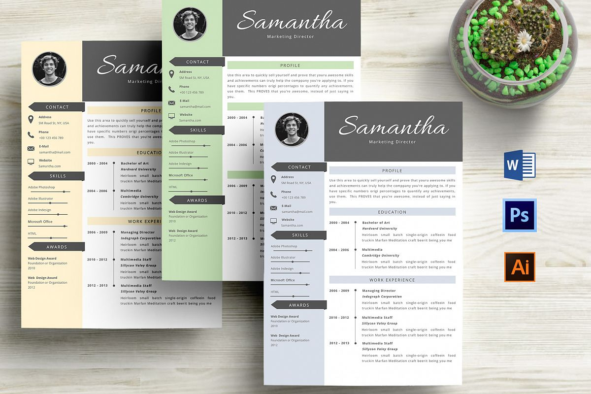 creative cv resume template word